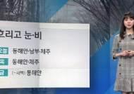 [날씨] 동해안·남부·제주 비나 눈…낮 기온 어제보다 낮아