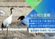 [뉴스체크|문화] 철원평야 찾은 두루미 7천여 마리
