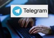 불법음란물 유포…텔레그램 'n번방' 운영자 등 60여 명 검거