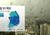[날씨] 전국에 비 소식…충청·남부 천둥번개 동반