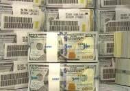 2월 외환보유액 4천92억달러…6개월 만에 감소