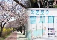 '거리두기' 지속…벚꽃명소 윤중로·석촌호수 당분간 폐쇄