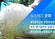 [뉴스체크|문화] 희귀 '댕구알버섯' 남원서 또 발견