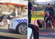 [영상] 차로 들이받고 머리 걷어차고…호주에서 경찰 과잉 진압 논란