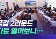 민주평통 제출 국감 자료 열어보니…'불법 음란물' 가득