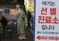 """""""사회 곳곳 소규모 산발적 감염""""…신규 313명, 8월 이후 최다"""