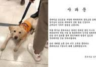 """예비안내견 막은 롯데마트…""""배려 못한 것 인정, 사과드린다"""""""