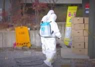 광주 안디옥교회 확진자 85명…지역사회 n차 감염 발생