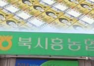 20대 사회초년생에도 14억…북시흥농협 '부실 심사' 점검