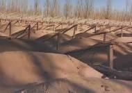 황사 발원지 사막화 '가속'…반나절이면 한반도 공습