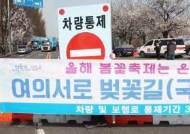 '여의도 벚꽃길' 통행 제한…석촌호수도 내일부터 통제