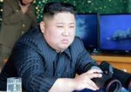 """미 """"김정은, 올해 핵·장거리미사일 시험 검토할 수도"""""""