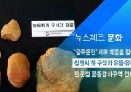 [뉴스체크|문화] 창원서 첫 구석기 유물·유적 발견