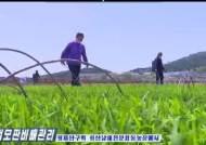 """[외안구단]국경 개방 망설이는 북한...일단 """"모내기 전투 시작"""""""