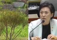 [단독] 고발 이후 '김현미 농지' 가보니 정비한 모습…커지는 주택 명의신탁 의혹
