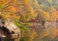 경북 청송 국가지질공원, 유네스코 세계지질공원 등재 권고