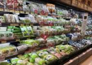 3월 소비자물가 1.3% 상승…6개월째 전체물가는 1%대