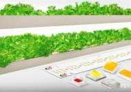삼성전자, 백색 빛 기반 식물 생장용 LED 신제품 출시