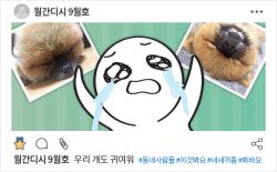 월간디시 9월호 : 우리 개도 귀여워