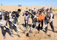 대한항공, 중국 쿠부치 사막에 '희망의 숲' 조성