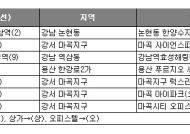 서울 일대 다중 역세권 수익형 부동산 '인기몰이'