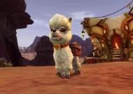 월드 오브 워크래프트: 격전의 아제로스, 애완동물 '도티' 판매 시작