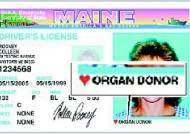 장기기증 여부 운전면허증에 2005년부터 표시