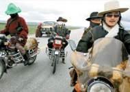 중국 칭짱 고원지대의 '21세기 유목민들'