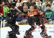 [사진] 로봇 격투기