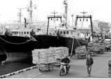 위기에 처한 수산업계 '커지는 SOS'