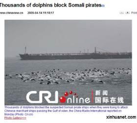 [사진] 수천 마리 돌고래가 <!HS>소말리아<!HE> <!HS>해적<!HE>들 막았다?