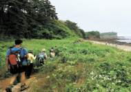 [WalkHolic] 전북, 에움길 1000리 …'걷기 낙원' 만든다