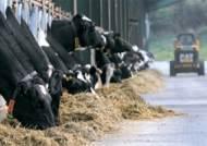 그 우유값, 여느 제품의 세배가 넘는 이유
