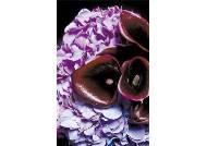 [home&] 꽃장식의 제1원칙, 색깔을 하나로 통일하라