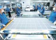 [그린 비즈니스] 태양광 분야 수직 계열화로 국제 경쟁력 갖춰