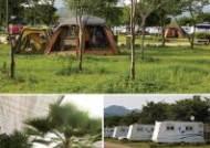 텐트 처음 치는 초보자를 위한 가평 자라섬 오토캠핑장