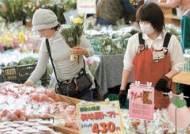 농민이 농사지으며 도매법인과 계약 일본은 선물 거래로 가격 변동 줄여