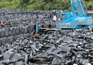 방사능 바닷물 공포 현실로 … 후쿠시마 오염도 급상승