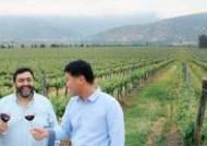 [J Report] 신이 탐한 이 포도밭 … 붉은 물방울, 한국을 탐하다