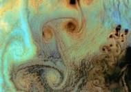 """오징어 얼굴 구름, 대기에 바람이 만들어낸 구름…""""신비하네"""""""