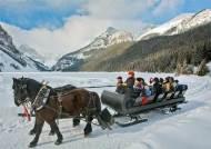 야생의 로키산맥, 캐나다 밴프국립공원