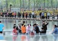 부산시민공원엔 '몸값 2억' 녹나무