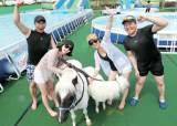 렛츠런 파크 부산·경남, 말 타다가 땀 나면 수영장에 풍덩