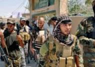 '이라크판 행주대첩' 아메를리 마을