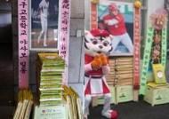 프로야구 팬 문화의 新 풍속도 '쌀 기부'