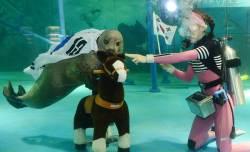 [사진] 아시안게임 개막 이틀 앞두고… '참물범 스포츠 대회' 개최