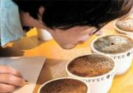 잘 내린 커피, 알고보니 물 온도가 달라요