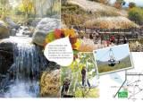 [천안&아산] 오색 숲과 은빛 들녘 … 가족 손 잡고 가을 만나러 갈까