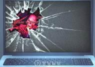 """자칭 IS 해커 """"펜타곤 전산망 비밀 문건 해킹""""…'전쟁 시나리오'도 보여"""
