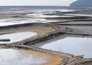 목마른 소양강댐, 수위 150m 사수 작전